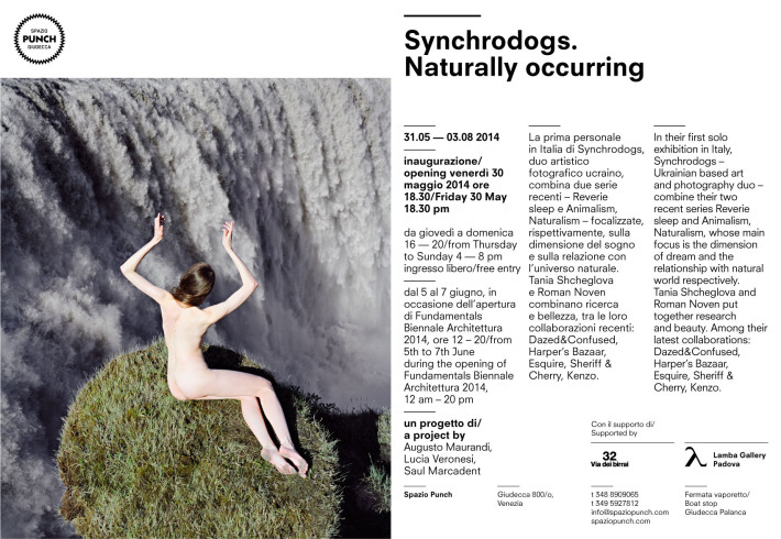 Synchrodogs in mostra @SpazioPunch
