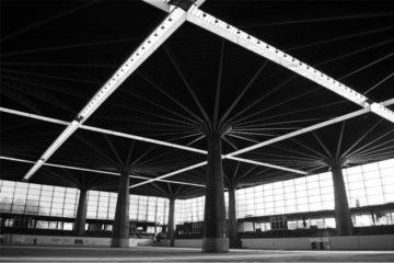 Storie di architettura non ordinarie - Palazzo del Lavoro / Foto di Emiliano Zandri