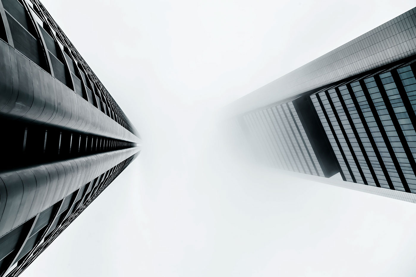 Into the fog - Joel Filipe