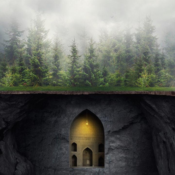 Foresta - Francesco Romoli