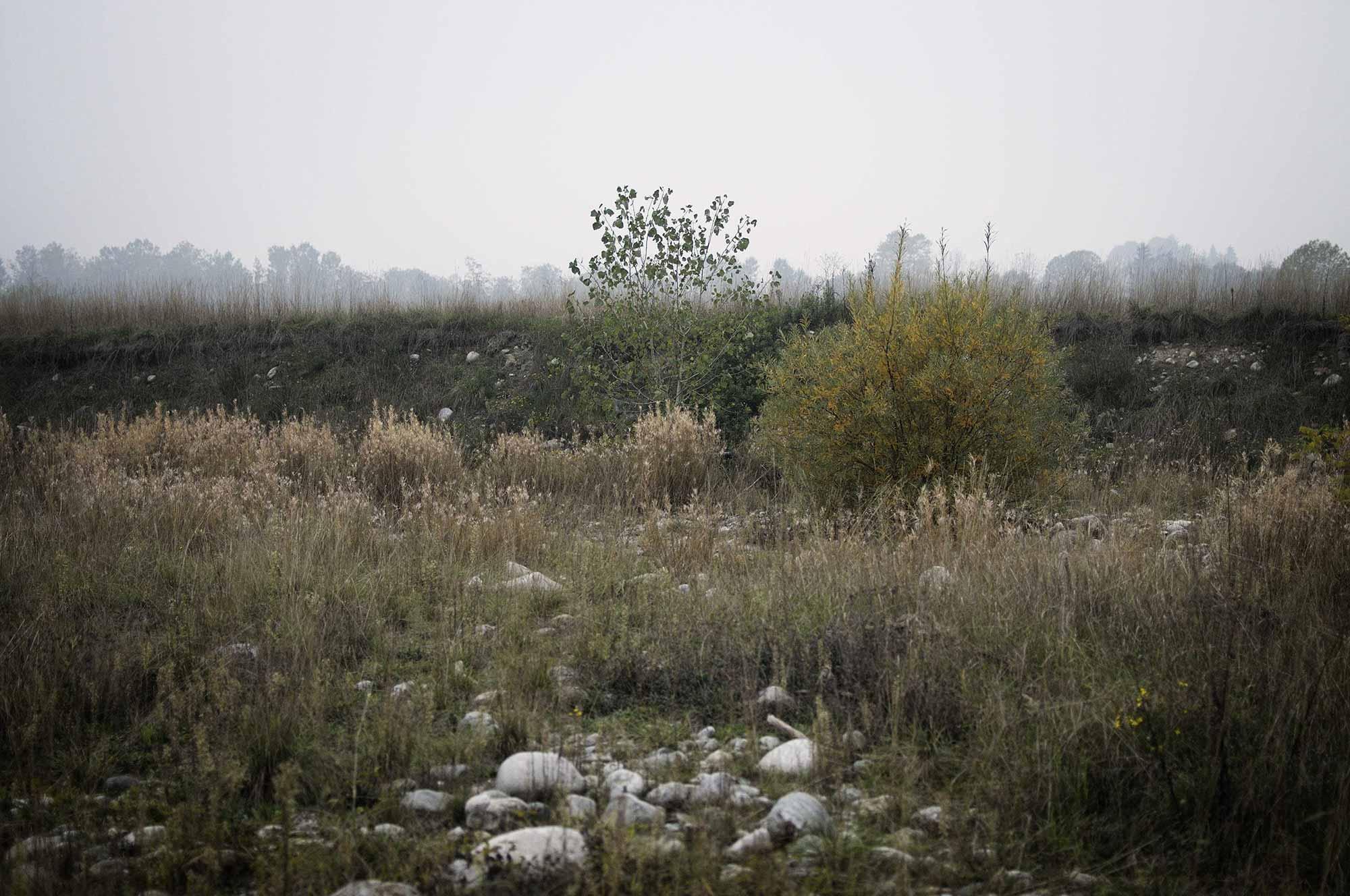 My own private river - Luca Prestia x Artwort
