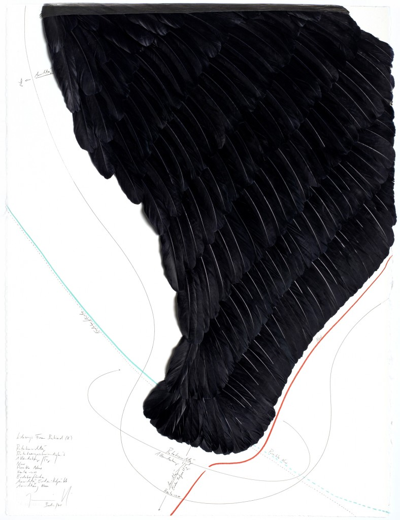 Sideways From Behind (V) Rotationsrichtung, Rotationsgeschwindigkeit, 1 Umdrehung/ Tag, Now, Possible Now, Heute → ∞, Erdoberfläche, Ausrichtung Erdmittelpunkt, Ausrichtung Oben, Jorinde Voigt, Berlin 2015, 77,5 x 57,5 cm, Tinte, Gänsefedern, Ölkreide, Tusche, Bleistift auf Papier, Unikat, Signiert