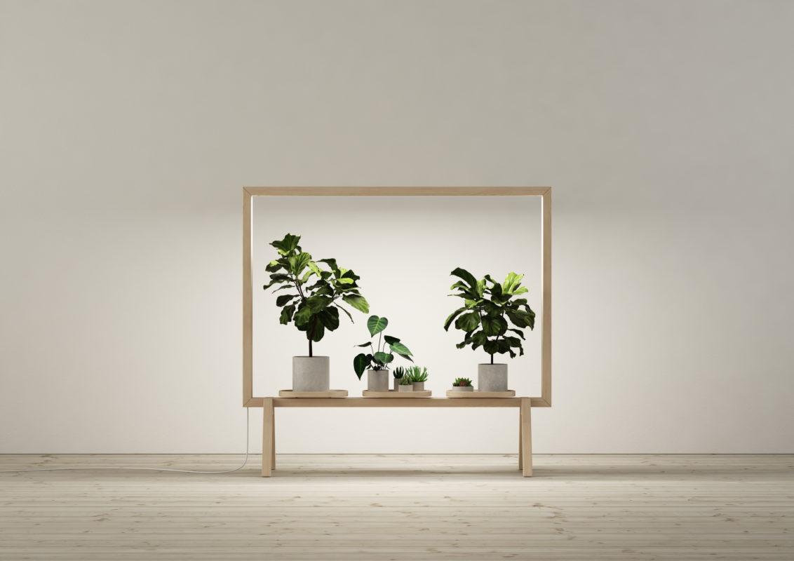 Greenframe la tua personale finestra sul verde artwort - La finestra verde giugliano ...